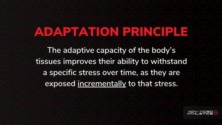 Adam Freidman Advanced Athletics Intelligent Progression Adaptation Principle Fitness Training