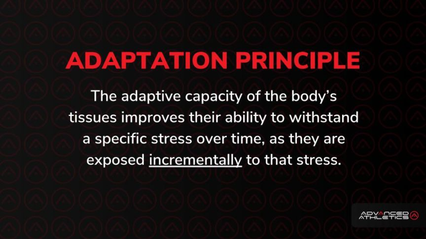 Adam Freidman Advanced Athletics Intelligent Progression Adaptation Principle Fitness Training